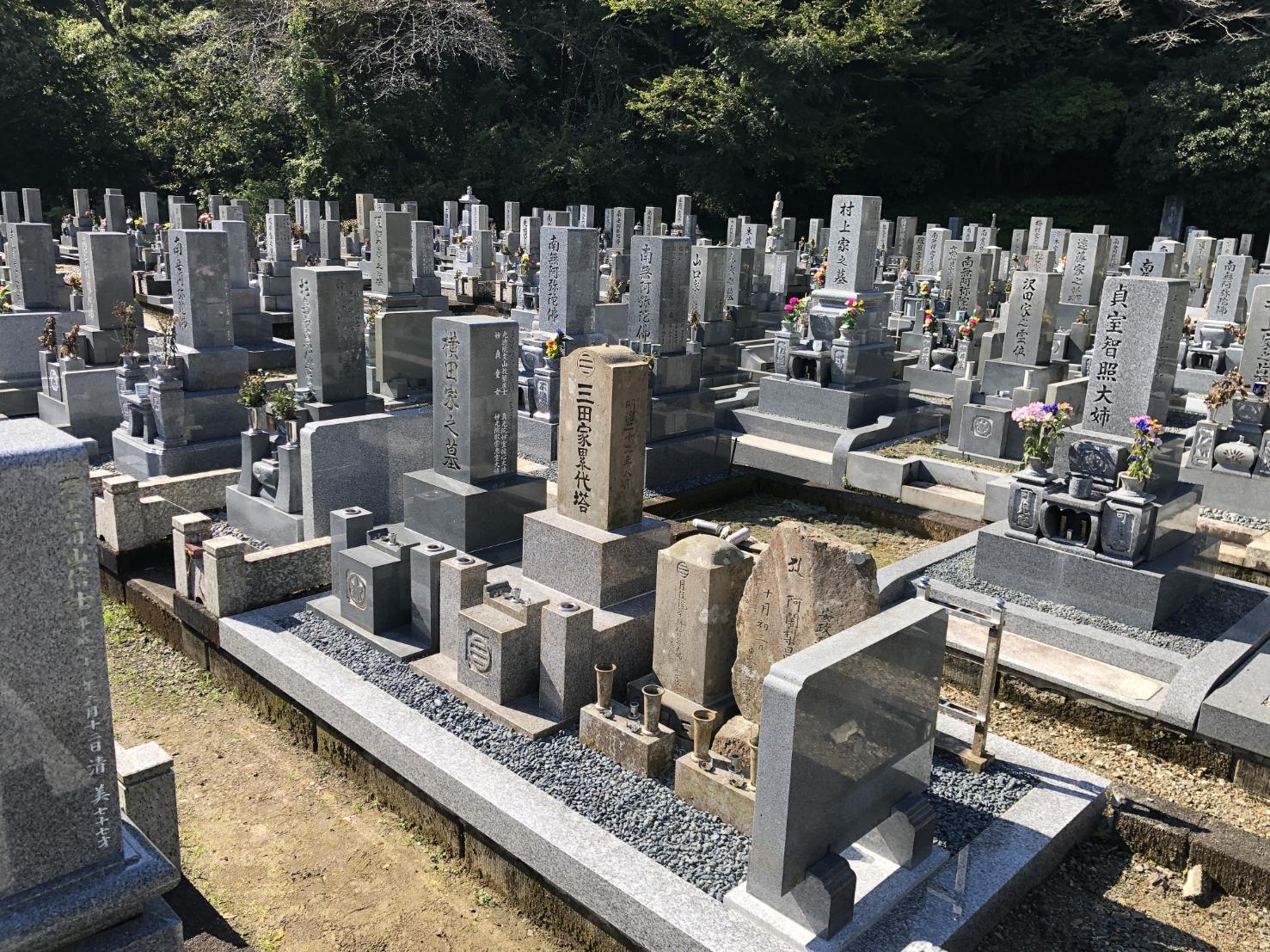 墓石の移転後